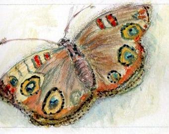 Watercolour Butterfly II, Postcard Sized painting, Original painting, Watercolour miniature, Butterfly fine art gift, Butterfly decor,