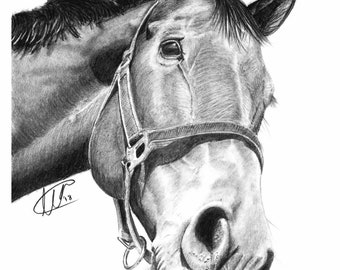Horse wall art | Picture | Animal print | Archival print | Original pencil drawing | Time lapse | Framed Print | Also available as print