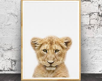 Lion Cub Print, Lion Cub Wall Art, Nursery Animal Print, Nursery Animals, Baby Lion Print, Baby Lion Wall Art,Nursery Wall Art, Baby Animal