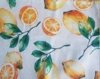 Lemon book sleeve