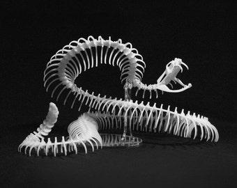 Rattlesnake Kit