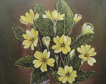 Floral art - primroses