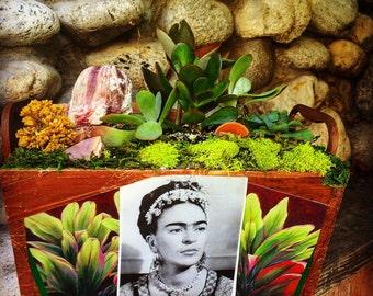Captivating Frida Kahlo 1940 Planter/ Frida Lover/ Succulents / Gift/ Coral/  Centerpiece/ Images