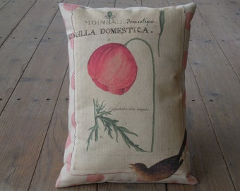 French Poppy Pillow, Botanical flowers, Farmhouse Pillows, Shabby Chic3, Spring Pillow, Mother's Day Gift,  INSERT INCLUDED