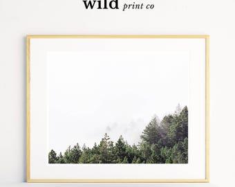 Forest Print, Nature Photography, Tree Print, Forest Art, Scandinavian Modern, Landscape Photography Print, Modern Printable Wall Art
