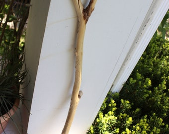 """Driftwood Branch 26"""" With Etching and a 'Y' end , Drift Wood Photo Prop , Boho Decorating , Beach Art"""