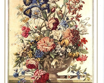 "June Flowers Art Print- 12 MONTHS of FLOWERS- 1700s Botanical Illustration- Winterthur Floral Arrangement- baby wedding gift idea 7.75 x 10"""
