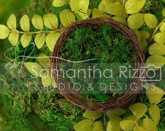 Digital Newborn Photography Background - Moss Nest