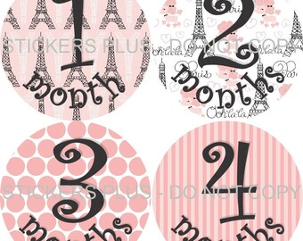 Baby Month Stickers Baby Girl Monthly Milestone Stickers Paris France Poodle Photo Prop Monthly Baby Age Stickers 1-12 or 13-24 Months