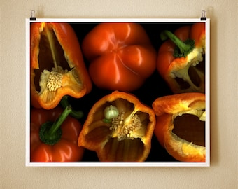 ORANGE PEPPER - 8x10 Signed Fine Art Photograph
