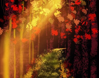 Sun;s Glow Over The Maple Trees