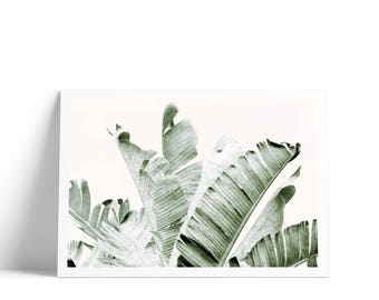 Palm Leaf Art Print, Banana Leaf Art, Scandi Leaf Print, Tropical Print, Palm Tree Art, Palm Leaf Print, Tropical Wall Art, Palm Leaves