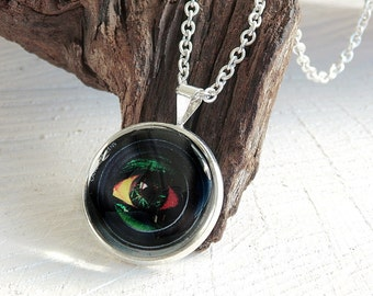 Eye Cabochon Necklace, Photo Jewelry, Cabochon Jewelry, EyePhoto Pendant, Glass Cabochon Pendant, Glass Dome Necklace, Gift