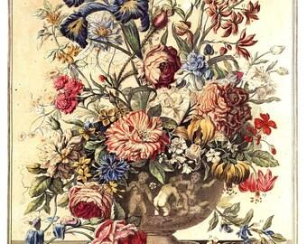 "June Flowers Art Print -12 MONTHS of FLOWERS- Winterthur Museum -1700s Botanical Illustration -Wedding Anniversary Baby Gift Idea - 14 x 19"""