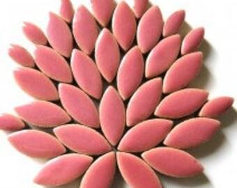 Petal Ceramic Mosaic Tiles - Dusty Rose - 50g (approx. 50 petals) (1.75 oz)