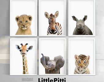 Safari nursery decor safari baby shower baby nursery decor set of 6 prints safari animal print nursery animal print digital download