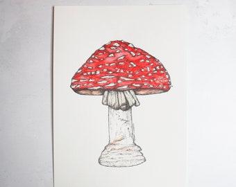 Amanita Muscaria Toadstool - Original A4 portrait illustration