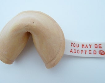 You may be adopted Fortune Cookie