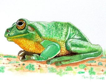 Greeting Card - Green Tree Frog - side view - sitting on lichen