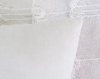 Pillow insert 12 X 12 cushion insert pillow form cushion form