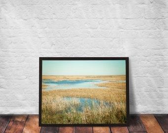 Framed Poster - My Everglade backyard + Fine Art Photography + Wall Art