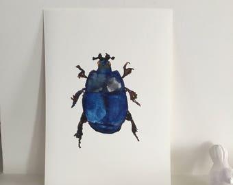 Digital Print - Beetle