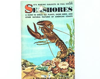 Vintage Golden Nature Guide- Seashores / Vintage Golden Guide / Sea Life Book / Biology Book / Vintage Field Guide / Homeschool Book