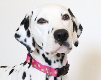 Nancy dog collar