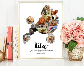 Poodle Collage gift - Pet Memorial Pet Loss  - Any dog breed toy Poodle Photo Collage wall art poster sign gift - DIGITAL FILE!