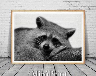 Raccoon Print, Raccoon Nursery Decor, Raccoon Wall Art, Black and White, Animal Print, Printable Art, Raccoon Art Portrait, Wall Art Decor