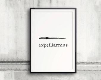 Expelliarmus Poster, Harry Potter Poster, The Prisoner of Azkaban, Harry Potter Spell