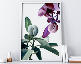 Purple Green Botanical Print Digital Download  Floral Photography Printable Wall Art  Large Wall Art Poster  Feminist Boho Chic Wall Decor