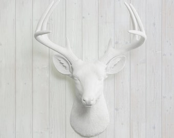 Large White Faux Deer Head | Wall Charmers™ Faux Taxidermy | Farmhouse  Decor| Rustic