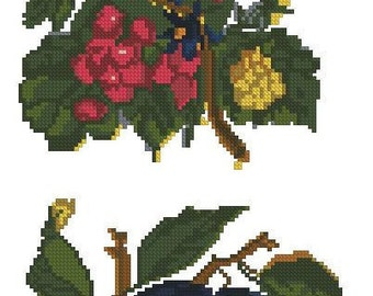 Fruits: plums and berries antique pattern for Berlinwork or cross stitch