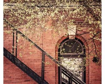 City Photography, Wall Art, Fine Art Photo, Urban, Home Decor, 5x5 and larger fine art print