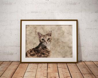 Orange Tabby Cat Striped Cat art Art Custom Pet Portrait on Canvas Watercolor Domestic Shorthair Abstract Cat Art Print Pastel Cat Art Print
