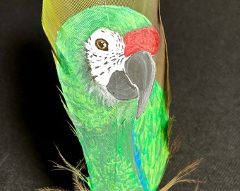 Hand Painted Military Macaw on Feather