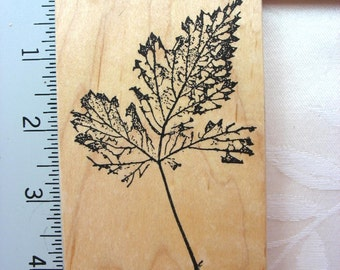 Fred Mullet Skeleton Leaf DESTASH Rubber Stamp~Used Rubber Stamps