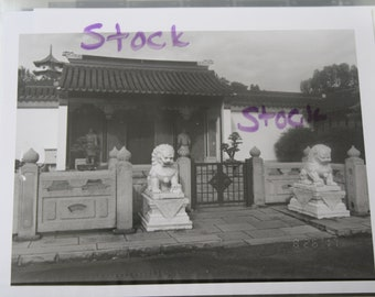 Black and White Film Photos of Chinese Garden in Singapore
