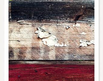 Wood Paint Grasshopper - Barn Wood Photograph - Rustic Minimalist Photo - Grasshopper Art Print - Red White Brown