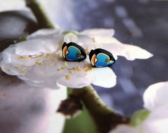 Fish Stud Earrings blue jewelry