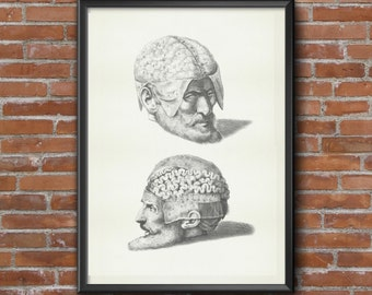 Old vintage Illustrations of human anatomy-Brain Anatomy-medical Prints 2