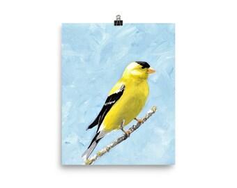 Goldfinch Art Print, 8 x 10 Inch Wall Art, Home Decor, Housewarming Gift, Birder Gift,