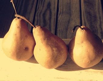 Pears still life, fine art photo, digital download, food art