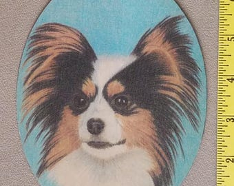 Papillon Dog Magnet