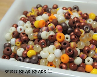 Fall Harvest size 6/0 seed bead mix  Fall Pumpkins Thanksgiving Autumn