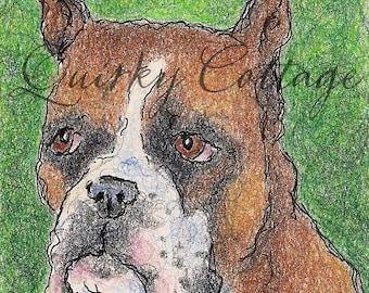 Boxer Portrait - Original Boxer Drawing - Fawn Boxer - Boxer Art