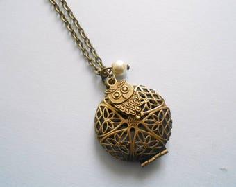 locket necklace - photo medallion necklace - owl necklace - bird necklace - photo pendant necklace - owl jewelry - owl charm - owl pendant