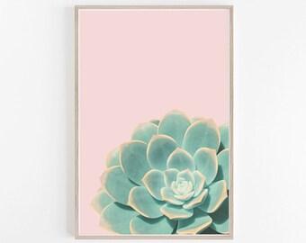 Succulent Print,Pastel,Wall Art,Blush Pink,Prints,Botanical Print,Succulent Art,Cactus Print,Wall Prints,Botanical Art,Cactus,Art Prints