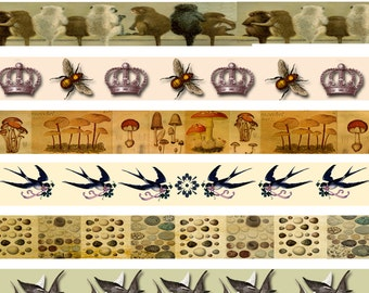 Natural History Strips, Journalling Strips, Animal Collage Sheet, Queen Bee, Crowns, Butterfly and Eggs, Altered Art Strips
